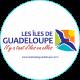 https://www.courcaud.fr/wp-content/uploads/2020/11/default_logo-80x80.png
